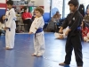 Blue Belts Stand at Attention