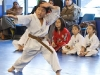 Brown Belt Student Demonstrates Forms