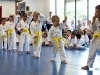 Yellow Belts Testing for Orange Belts