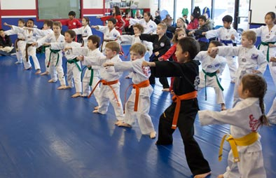 Park's TKD Students